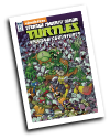 TMNT: Amazing Adventures # 11 (IDW Comics 2016)