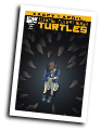 TMNT: Casey And April #  3 of 4 (IDW Publishing 2015)