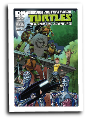 TMNT: New Animated Adventures # 13 (IDW Comics 2014)