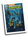 TMNT: New Animated Adventures # 18 (IDW Comics 2014)